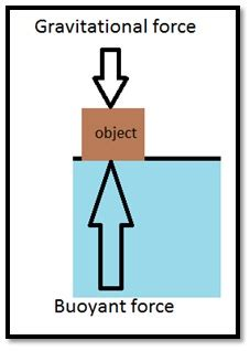 cbse ncert notes class  physics gravitation