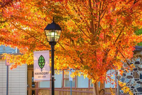 autumn  hahndorf german village andrey moisseyev