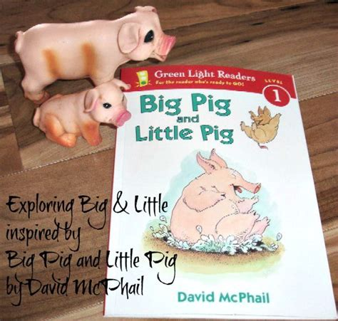 exploring big and inspired by big pig and 459 | 05282ee3856ec2de82549f50332dd804