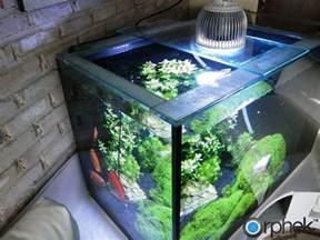 Le Led Aquarium Plantes by Orphek Pr72 Plant 233 E Aquarium 233 Clairage Led