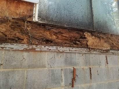 Damage Water Termite Structural Repair Example Upstate