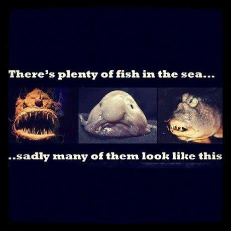 Fish In The Sea Meme - there s plenty of fish in the sea meme picture webfail fail pictures and fail videos
