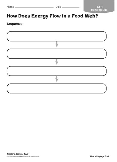 Energy Flow In Ecosystems Worksheet Free Worksheets Library  Download And Print Worksheets