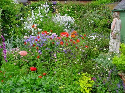 226 Best Perrenial Flower Garden Sun English Cottage
