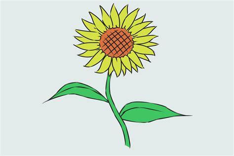 bloem tekenene een bloem tekenen wikihow