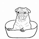 Coloring Boxer Dog Pages Bowl Sitting Drawing Down Template Sketch Getdrawings Again Bar Looking Case Don sketch template