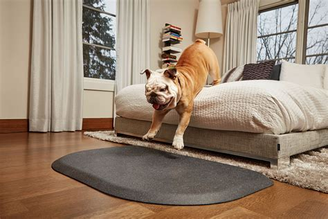 Pet Doormat by Wellness Petmats Rounded Pet Mat For Dogs Vic Pharmacy