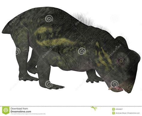 Lystrosaurus- 3d Dinosaur Stock Illustration. Illustration