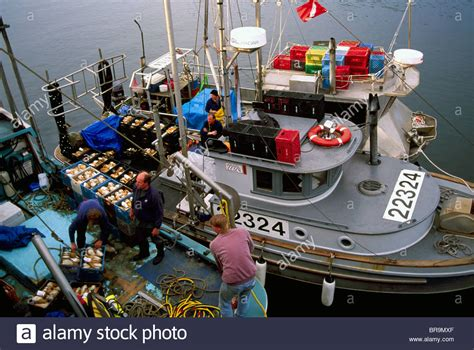 Fishing Boat Jobs Vancouver Island by Ucluelet Bc Vancouver Island British Columbia Canada