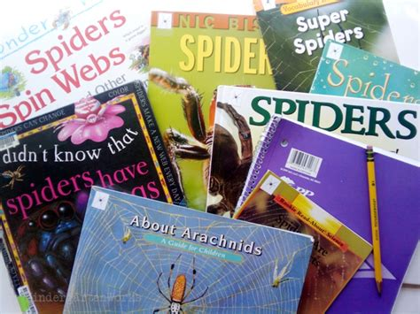 spiders non fiction literacy center activity 157 | Non Fiction Literacy Center for Kindergarten spider books
