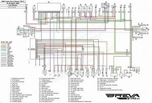 79 Dodge Diplomat Wiring Diagram