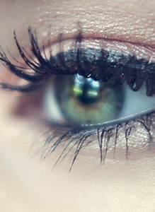 Makeup Tutorial  How To Apply Eyeshadow
