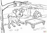 Trampoline Coloring Deer Rabbit Bouncing Pages Drawing Printable Playground Slide Under Pig Getdrawings Supercoloring sketch template