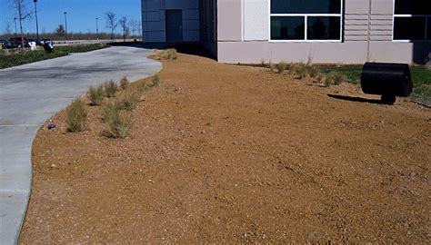 bay area landscaping solution for high foot traffic areas