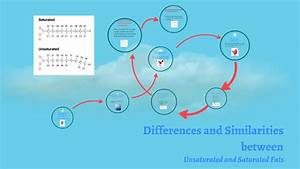 Differences And Similarieties By Oscar Yun On Prezi