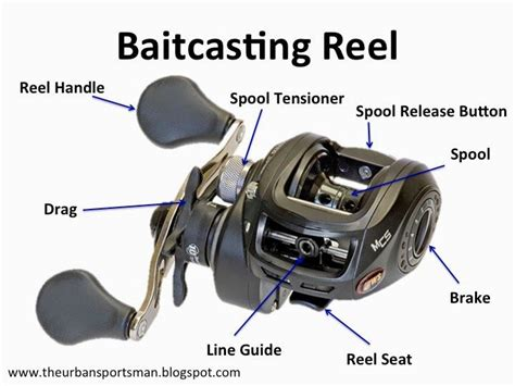 understanding   types  fishing reels