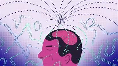 Brain Speech Waves Signals Neuroscience Spinal Cord