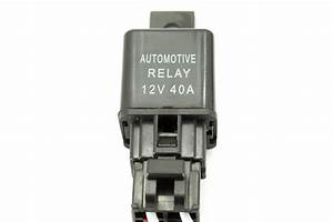 List Of Synonyms And Antonyms Of The Word  Honda Relay Switch