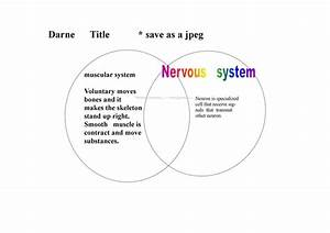 Darne U0026 39 S Blog  My Venn Diagram Of The System
