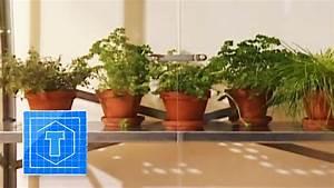 Holzofen Für Küche Zum Kochen : bauanleitung gew chshaus f r die k che anleitung zum selber bauen youtube ~ Orissabook.com Haus und Dekorationen