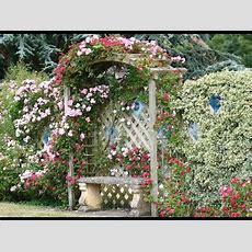 Cottage Garden Designs I Cottage Garden Designs Ideas