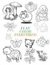 Coloring Everything Preschooler Toddler Activity Awesome Animals Flowers Fun Shapes Giant Notebooks Blossom Gre sketch template
