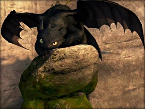 123 Best Images About Toothless- U Just Have To Luv Him