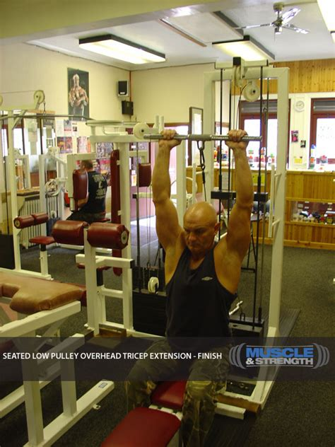 seated  pulley overhead tricep extension video