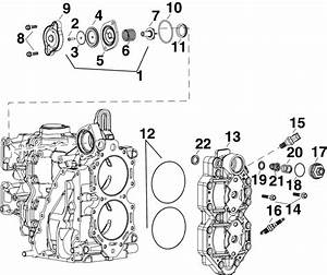 Evinrude Cylinder Head  U0026 Thermostat Parts For 2011 65hp