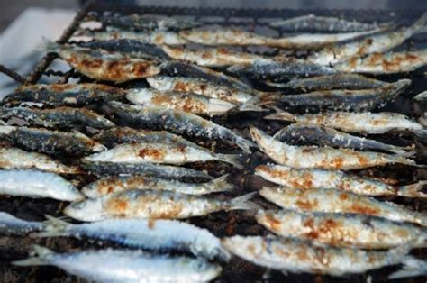 sardine cuisine sardines portuguese summer dish all about portugal