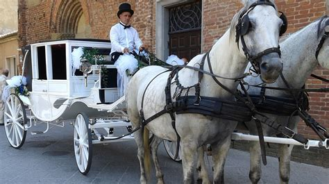 Carrozza Con Cavalli Per Matrimonio by Carrozza Per Matrimoni Siena Toscana