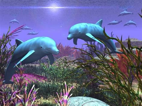 3d Wallpapers Of Animals by Collected Wallpaper 3d Animal Wallpaper 3d Fish