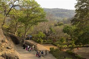 Sanjay Gandhi National Park in Mumbai: Visitor's Guide