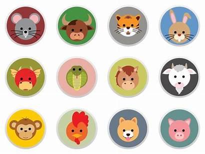Animal Avatars Avatar Dribbble Zodiac Flat Chinese