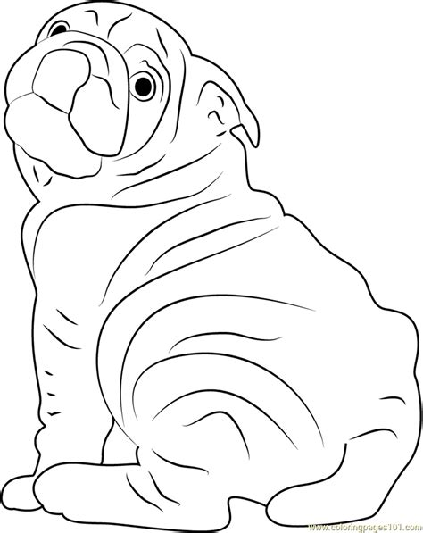 dog breeds  america coloring page  dog coloring pages coloringpagescom