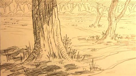 how to draw forest backgrounds for