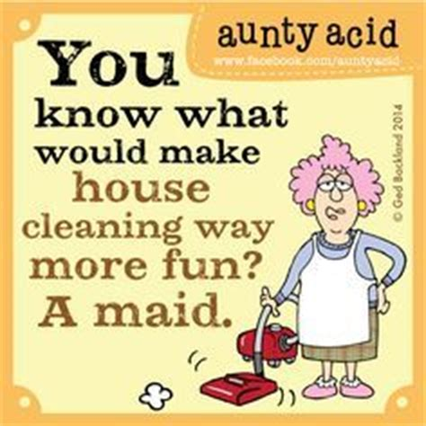 25 Funny House Cleaning Quotes & Sayings | QuotesBae