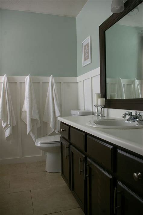 Great Bathroom Paint Colors by Sherwin Williams Sea Salt Great Bathroom Color Or Guest