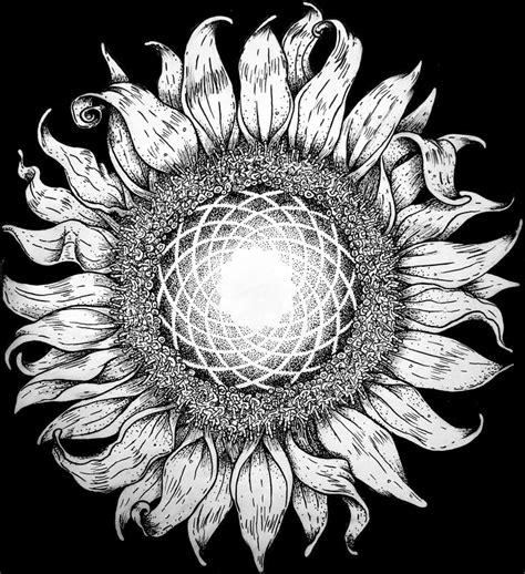 fibonacci sunflower   tattoomaybe ink  paper