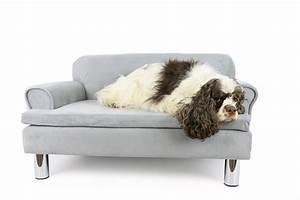 Sofa Pour Chien : canap pour chien zolia liloe panier et corbeille ~ Teatrodelosmanantiales.com Idées de Décoration