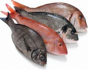 Healthy Recipe Update: Eat Fish Every Week can reduce loss ...