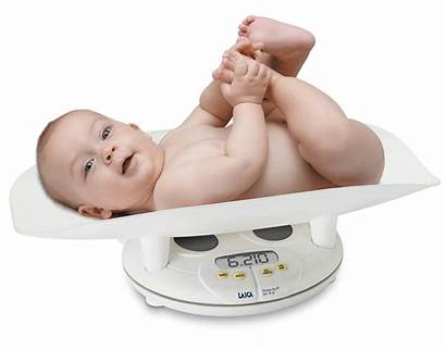 Weight Gaining Infants Should Gain Newborn Birth