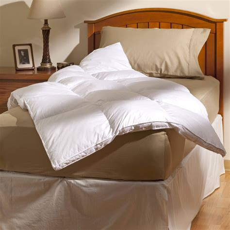 bed bug mattress protectors allerease maximum allergy bed bug protection zippered