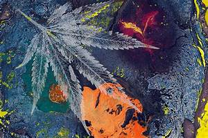 The, Best, 6, Modern, Marijuana, Art, Pieces, You, Have, To, See, In, 2021