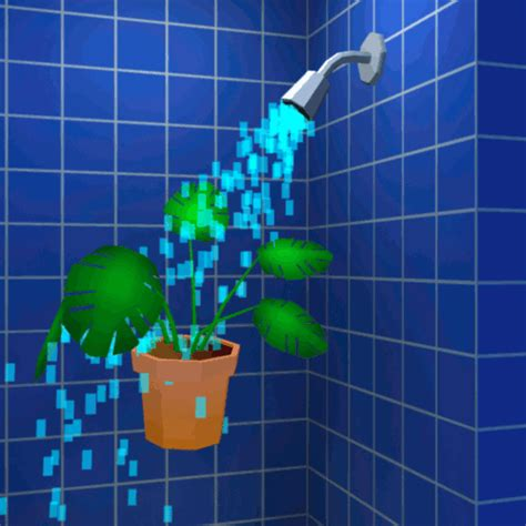 shower soap shower houseplant gif find on giphy