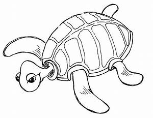 Sea Turtle Cute Pages Coloring Pages