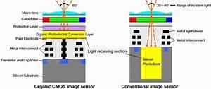Organic Photo Sensor Dumps Silicon  Promises To Shatter