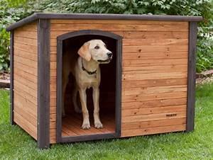 Niche Petit Chien : plan niche chien 10 niches pour chien construire soi m me ~ Melissatoandfro.com Idées de Décoration