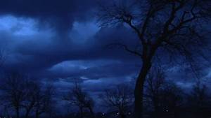 Moon, Moonshine, Moon, Night, Sky, Mystic, Spooky, Scary, Tree