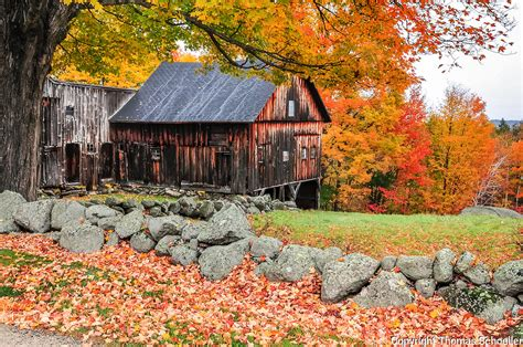Charming Rustic Barn Framed By Stone Fences And Brilliant